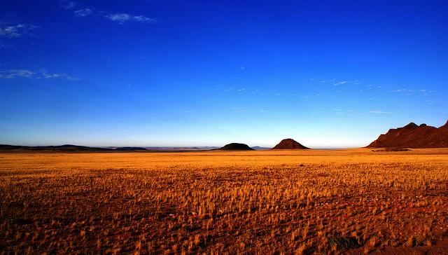 Weird and Wonderful Namibia