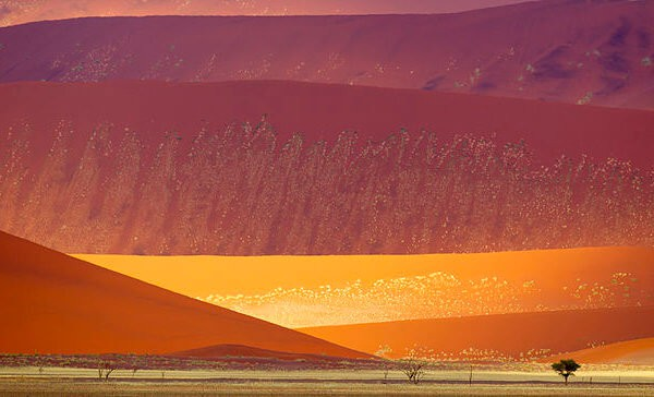 Sossusvlei South of Namibia