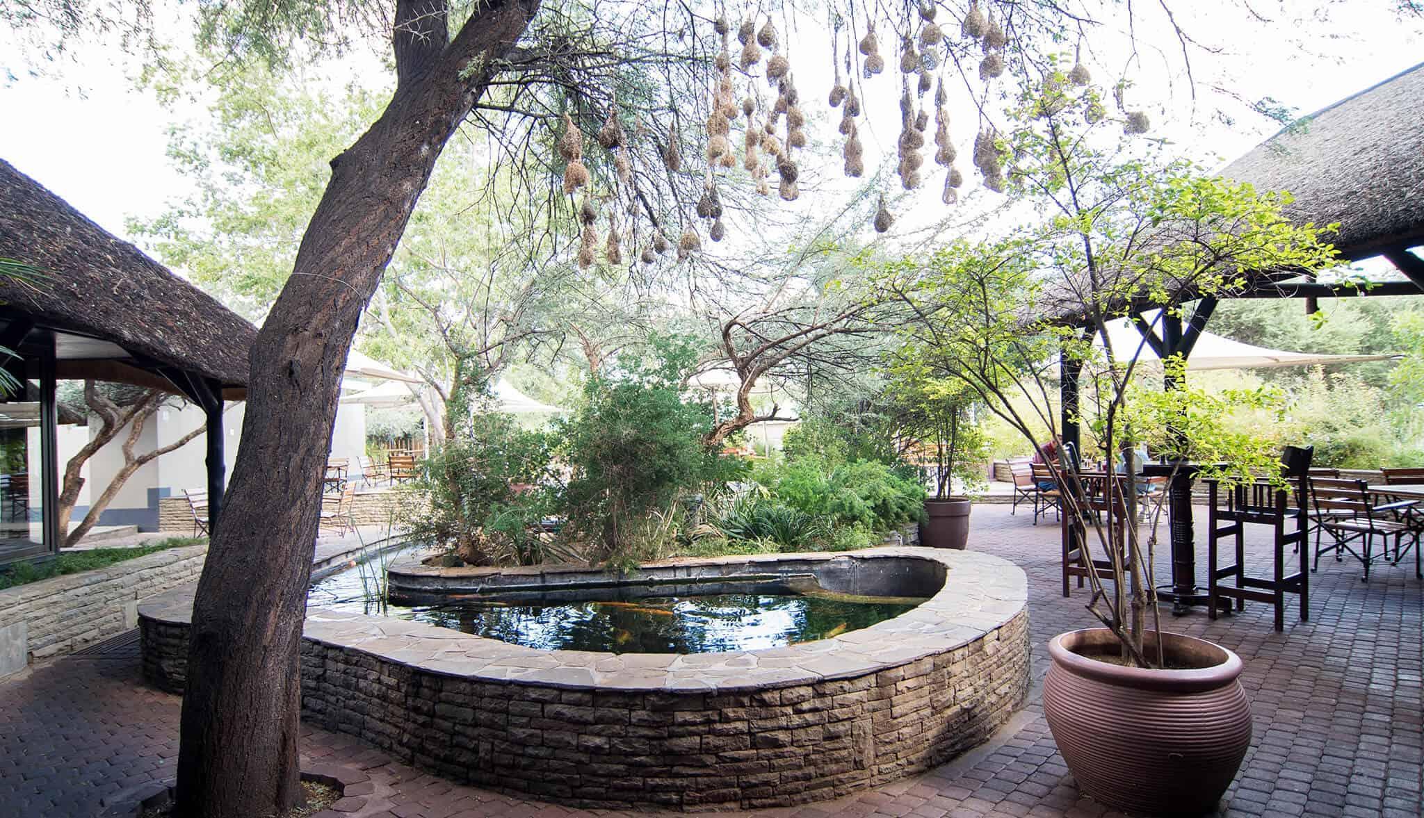 Restaurant in Windhoek - Arebbusch